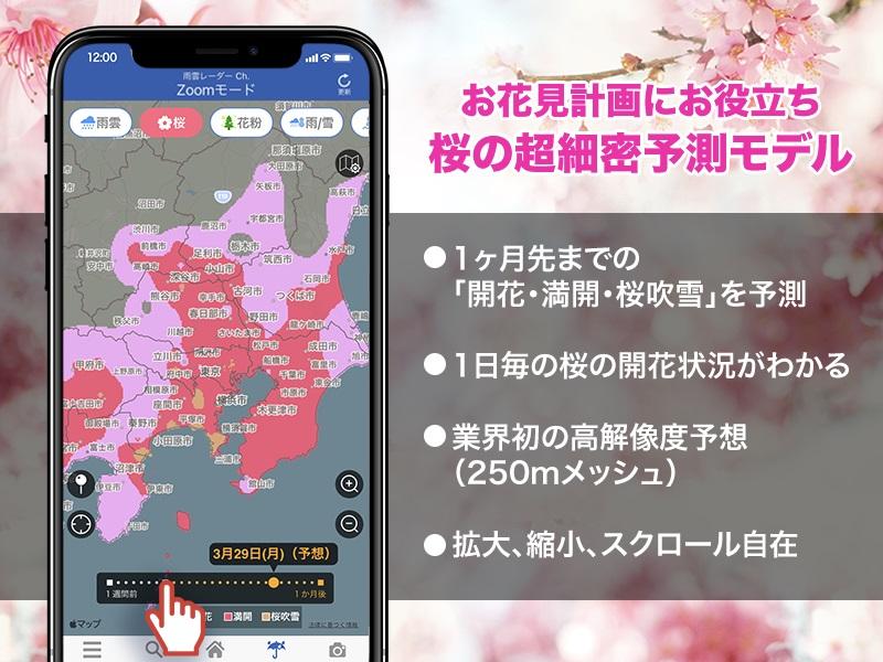レーダータブ桜モード
