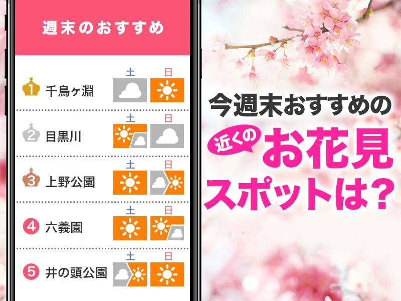 桜コンテンツ紹介