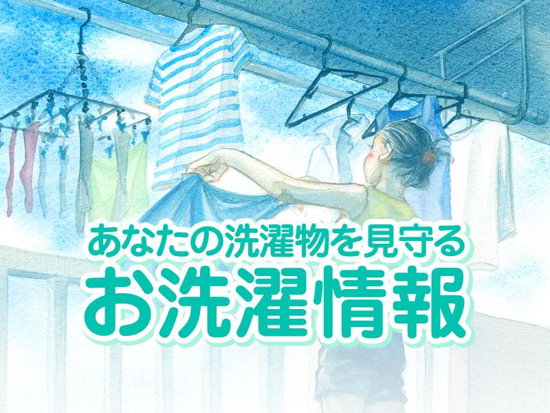 お洗濯情報