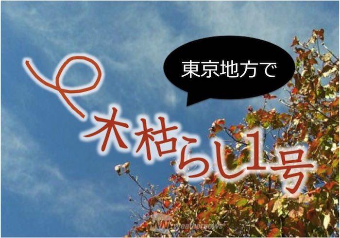 号 去年 の は 観測 東京 1 の 木枯らし